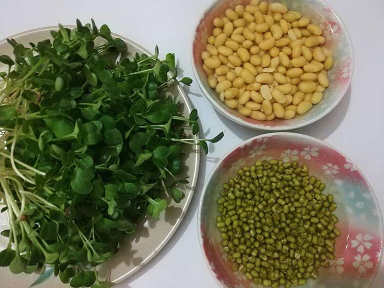 Đậu xanh - Nguyên liệu quý cho sức khỏe