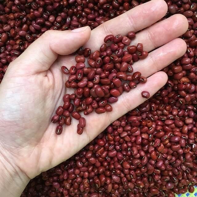 Đậu đỏ - Loại hạt có nhiều dinh dưỡng với các công dụng hữu ích